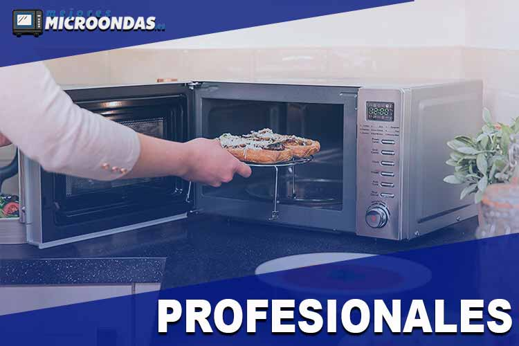 mejores-microondas-profesionales